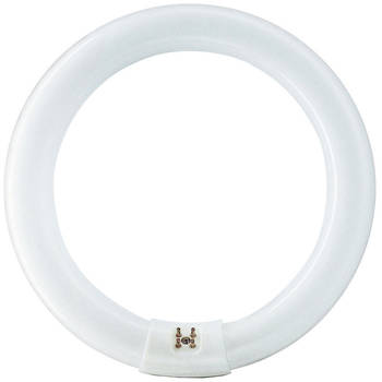 Heller 22W Fluorescent Replacement Globe
