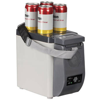12V/6L Portable Cooler and Warmer